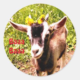 Pegatina Redonda La cabra adorable del bebé dice Baaa Baaa