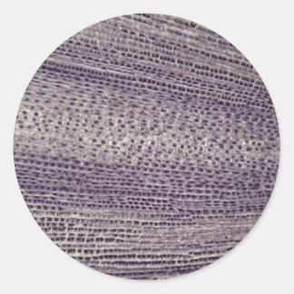Pegatina Redonda Las células de una haba arraigan (Faba de la
