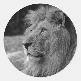 Pegatina Redonda León negro y blanco - animal salvaje