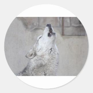 Pegatina Redonda Lobo gris del grito