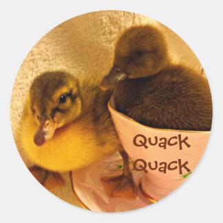 Pegatina Redonda Los patos adorables dicen al curandero