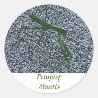Pegatina Redonda Mantis religiosa que camina en los pegatinas del