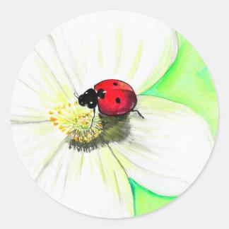 Pegatina Redonda Mariquita en la flor blanca