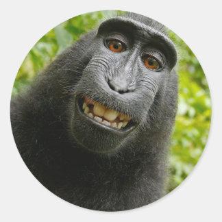 Pegatina Redonda Mueca del mono