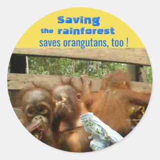 Pegatina Redonda Orangutanes de la selva tropical y del bebé del