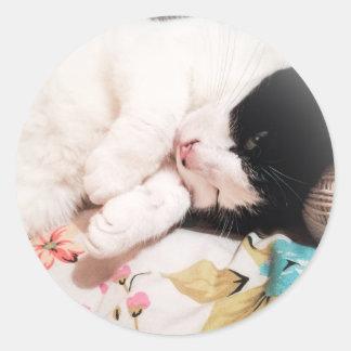 Pegatina Redonda Pegatinas lindos de la foto del gato