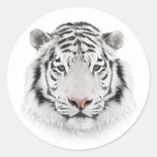 Pegatina Redonda Pegatinas redondos de la cabeza blanca del tigre