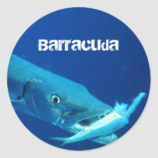 Pegatina Redonda Pescados del Barracuda