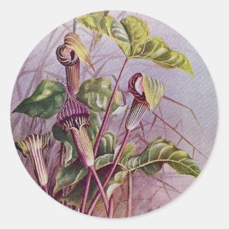 Pegatina redondo de la flor botánica del