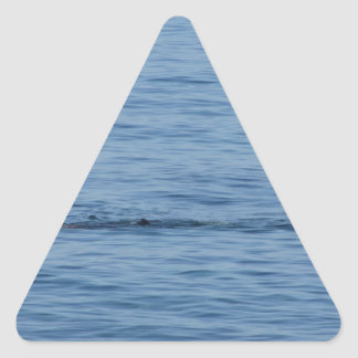 Pegatina Triangular Buceador del mar en nadada del juego del equipo de