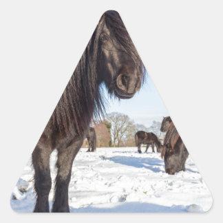 Pegatina Triangular Caballos negros del frisian en nieve del invierno