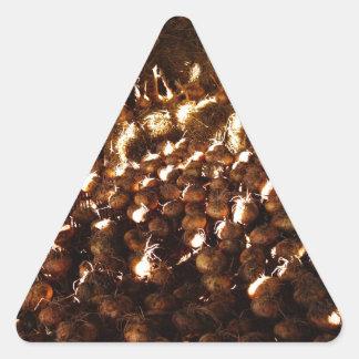 Pegatina Triangular Cebollas a montones