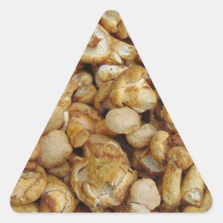 Pegatina Triangular Chantarelles