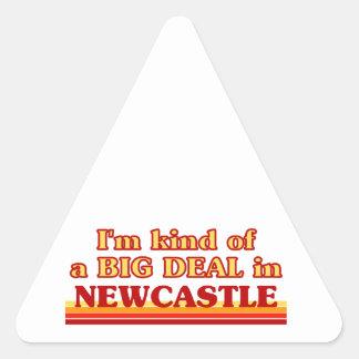 Pegatina Triangular Clase de I´m de una gran cosa en Newcastle