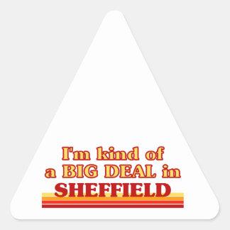 Pegatina Triangular Clase de I´m de una gran cosa en Sheffield