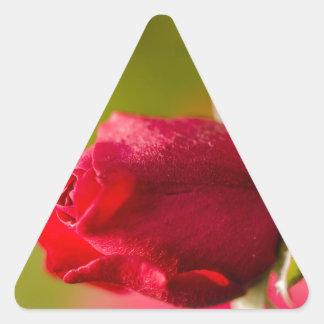 Pegatina Triangular Diseño ascendente del cierre del rosa rojo