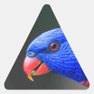 Pegatina Triangular Fresco-Arco iris-Lorikeet-silkenphotography