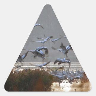 Pegatina Triangular Grúas del vuelo
