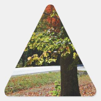 Pegatina Triangular Hojas de otoño en Maine