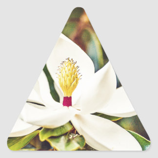 Pegatina Triangular Magnolia en la floración
