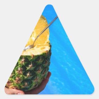 Pegatina Triangular Mano que sostiene la piña fresca sobre piscina