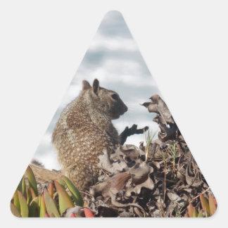 Pegatina Triangular Pequeña ardilla