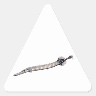 Pegatina Triangular Pez trumpeta