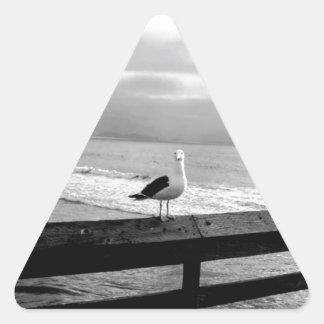 Pegatina Triangular ¿Qué usted está mirando?