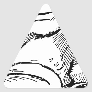 Pegatina Triangular Rana