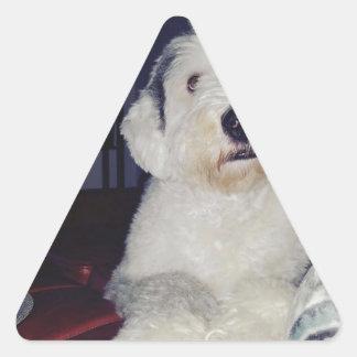 Pegatina Triangular Sam el perro pastor
