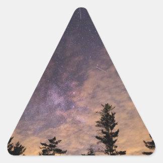 Pegatina Triangular Silueta de árboles en la noche