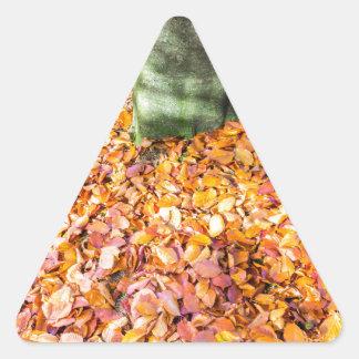 Pegatina Triangular Tierra alrededor del tronco de árbol cubierto con