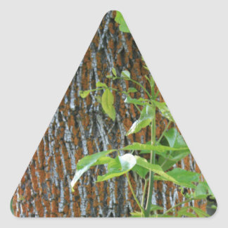Pegatina Triangular Tronco con follaje