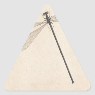 Pegatina Triangular Una libélula, por Nicolás Struyk, temprano décimo