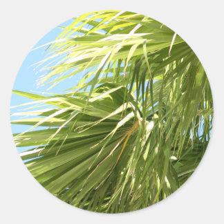 Pegatina ventoso de la palma