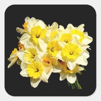 Pegatinas amarillos del narciso de la primavera pegatina cuadrada