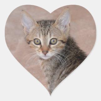 Pegatinas del corazón del gatito del Tabby Pegatina En Forma De Corazón