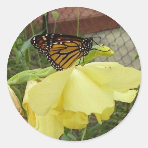 Pegatinas grandes de Mariposa Etiquetas Redondas