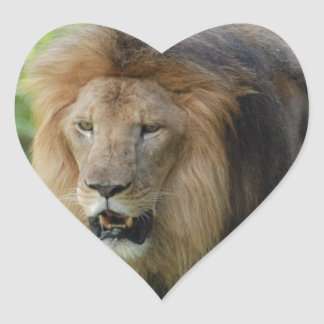 Pegatinas orgullosos del león calcomanía corazón personalizadas
