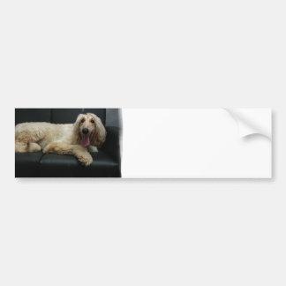 Pegatinas para el parachoques del perro de afgano etiqueta de parachoque