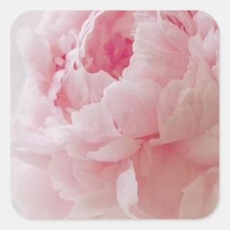 Pegatinas rosados delicados del Peony Pegatina Cuadrada