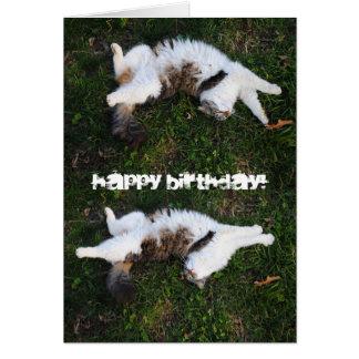 Pegue una tarjeta del feliz cumpleaños del gato de