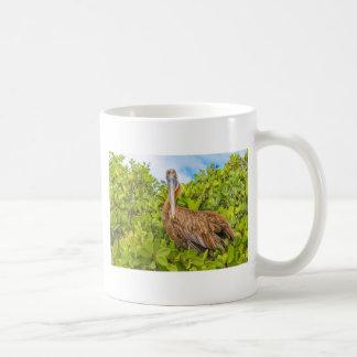 Pelícano grande en el árbol, las Islas Galápagos, Taza De Café