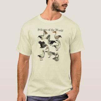 Pelícanos de la camisa del mundo