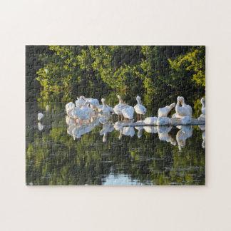 Pelícanos la Florida de la isla de Sanibel Puzzle