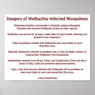 Peligros de los mosquitos de Wolbachia por Póster