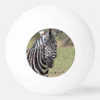 Pelota De Ping Pong Animales polivinílicos - cebra