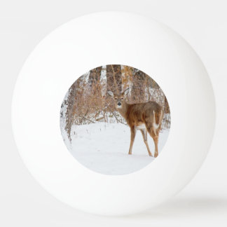Pelota De Ping Pong Ciervos del dólar del botón en el campo Nevado del