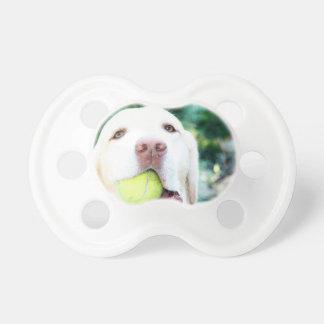 Pelota de tenis del perro del labrador retriever chupetes para bebés