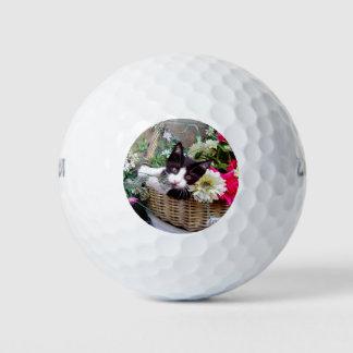 Pelotas De Golf Gatito en una cesta